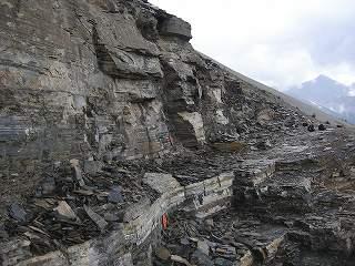 バージェス頁岩の画像 p1_6