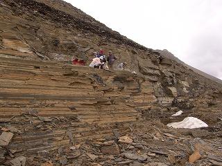 バージェス頁岩の画像 p1_8