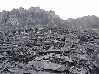バージェス頁岩の画像 p1_24